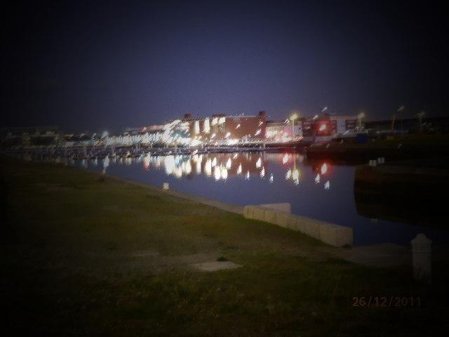 Le port du Havre - Page 2 Pc260215