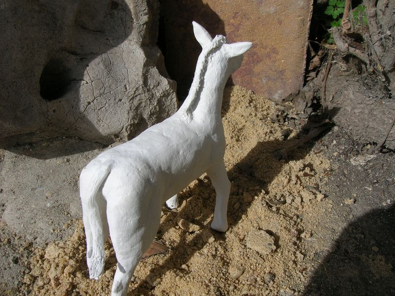 modelado de animales Dscn0439