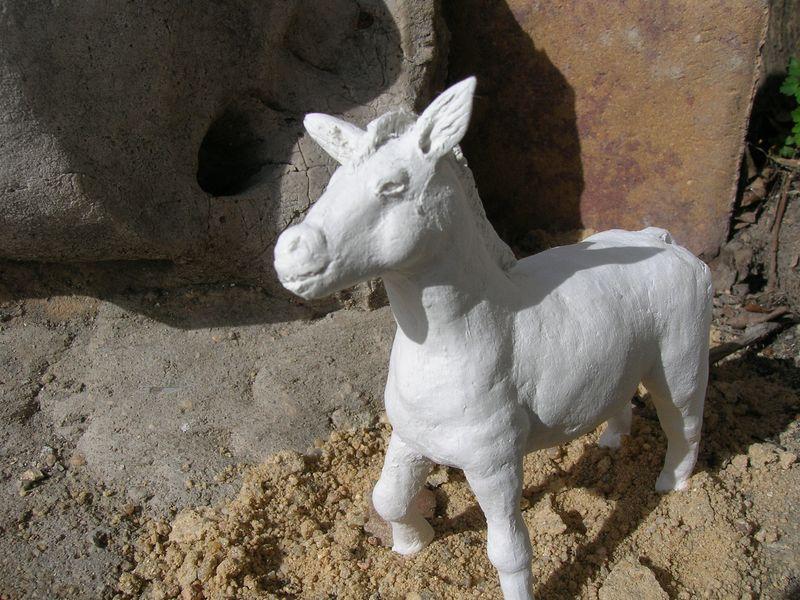 modelado de animales Dscn0440
