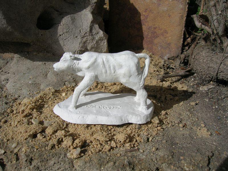 modelado de animales Dscn0443