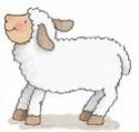 Un autre... Sheep410