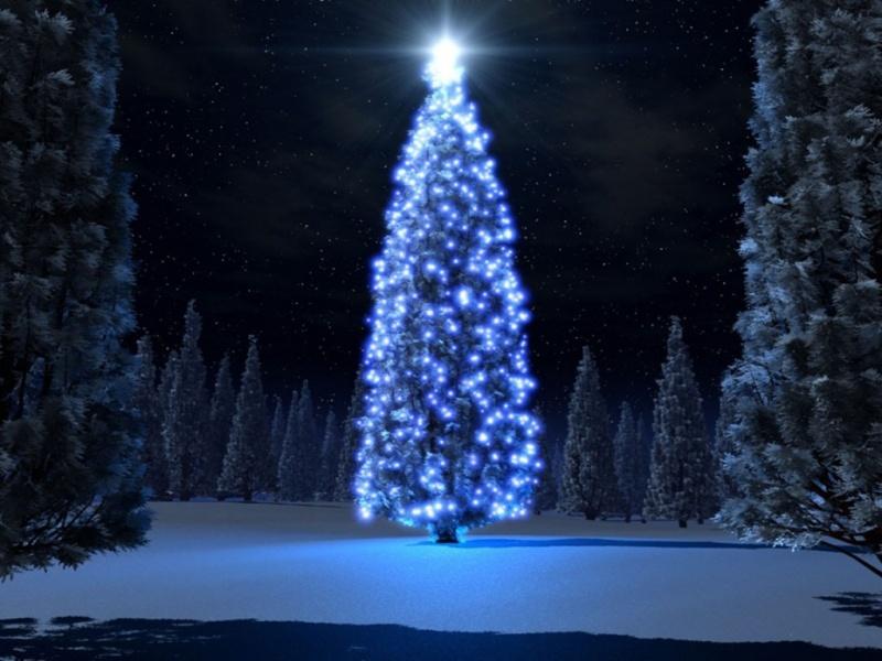 El mágico árbol Arbol_10