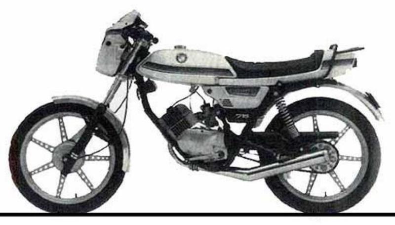 Duda Monza- Cobra 0158