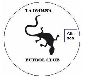 Torneo Apertura de fútbol 5