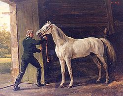 quelques chevaux historiques Aly10