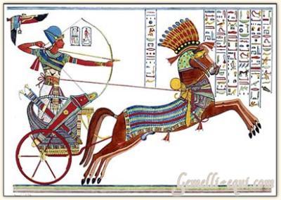quelques chevaux historiques Bv000013