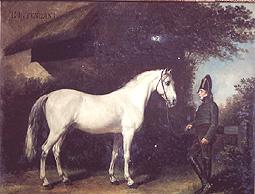 quelques chevaux historiques Intend10