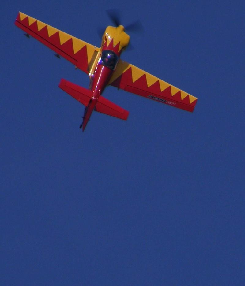 Aero GP 2008 Mamaia E210