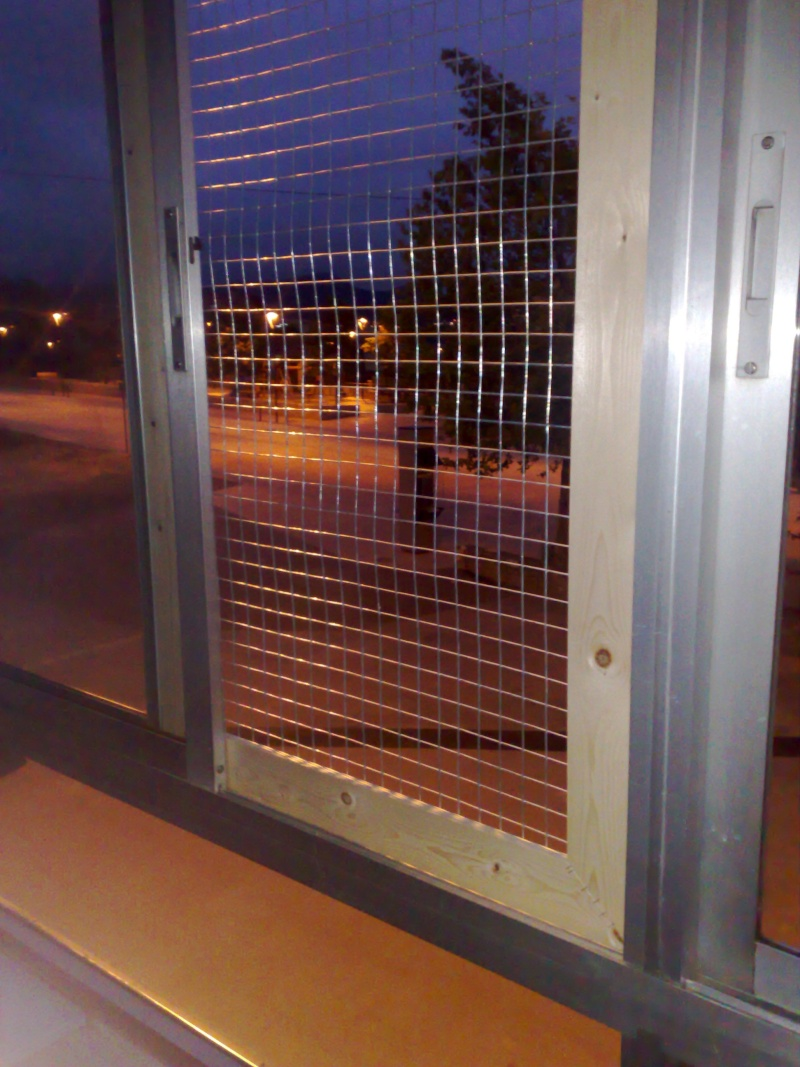 Mosquiteras y redes para las ventanas y cómo proteger a nuestros gatos 28062011