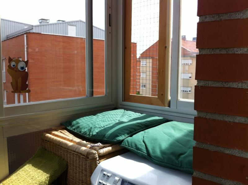 redes - Resumen de ideas para mosquiteras y redes ventanas y balcón para gatos. La_fot12