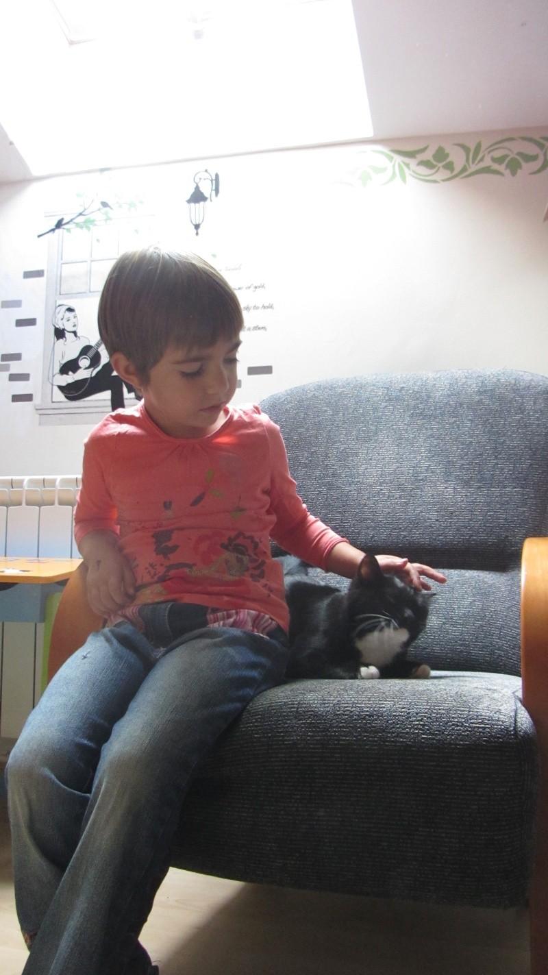 Milka, la gatita más dulce ha llegado a nuestra casa!!! Milka_13