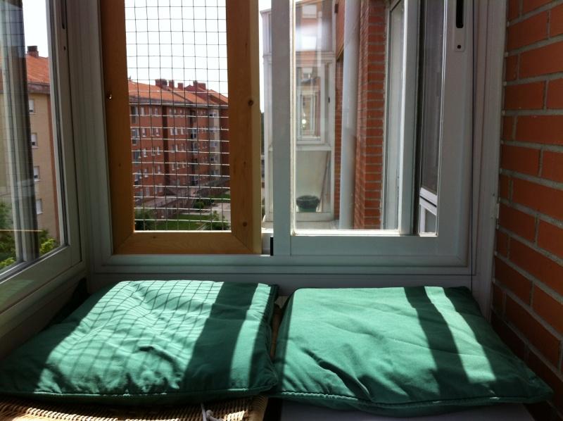 Resumen de ideas para mosquiteras y redes ventanas y balcón para gatos. V10