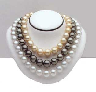 perle Perle10