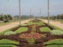 Mohammedia ou la ville des fleurs Dsc02521
