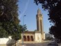 Mohammedia ou la ville des fleurs Dsc02527