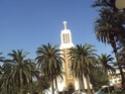 Mohammedia ou la ville des fleurs Dsc02530