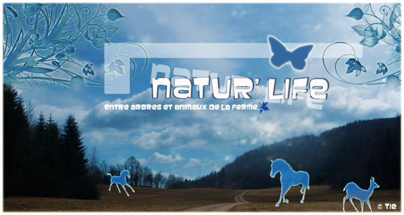 Natur'Life Naturl11