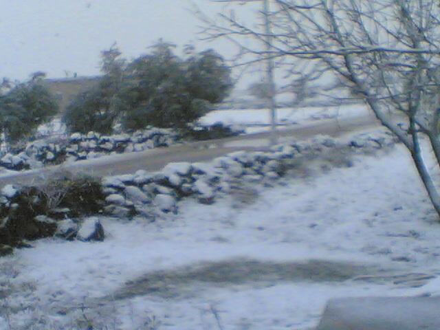 صور الثلج في سملين 09470811