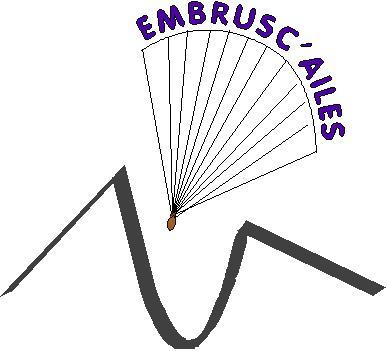 Logo pour le club Embrus11
