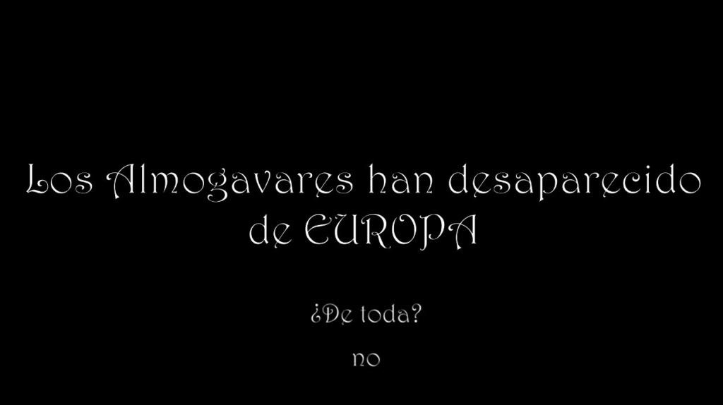 ¿HAN DESAPARECIDO DE EUROPA? 117