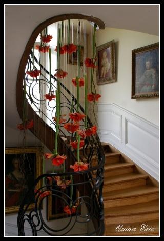 Portes fenêtres et escaliers. Imgp0711