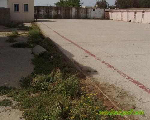 فتح أظرفة طلبات العروض الخاصة بمشروع تهيئة كرة القدم المصغرة بمركز حد الغربية P1010112