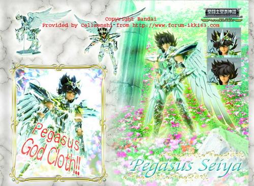 [Giugno 2008] Seiya God Cloth Pegasu10