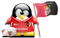saison de foot 2007-2008 - Page 4 Stadet10