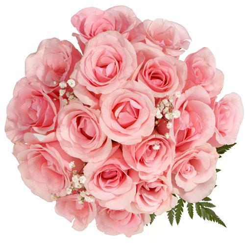 تاثير الورود علينا 00739110