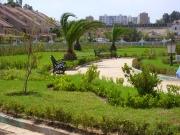 VILLE D'ALGERIE Jardin11
