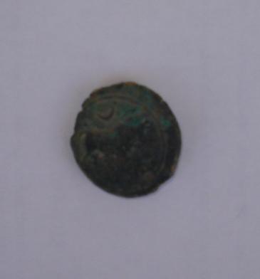 Semis de Castulo (FAB714 ?) Dsc00111