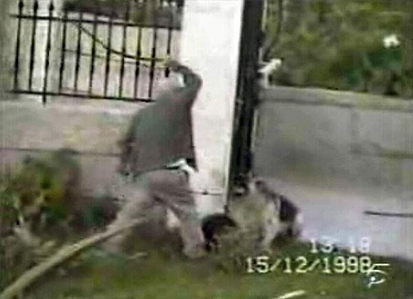 Los maltratadores de animales, también lo son de personas Perroc10
