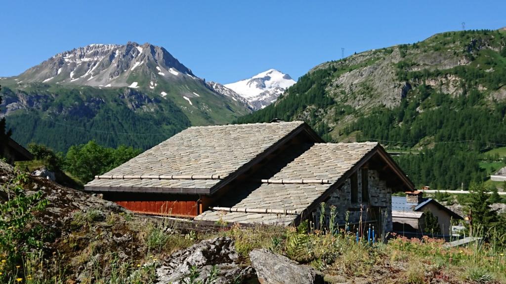 L'Alpage de la Davie depuis Le Chevril 00610