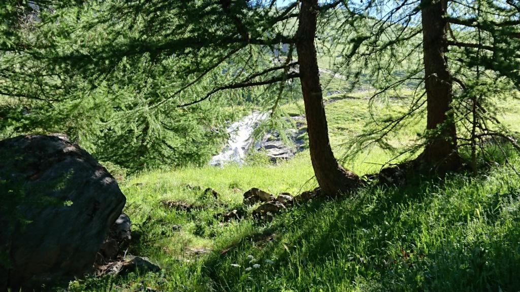 L'Alpage de la Davie depuis Le Chevril 01910