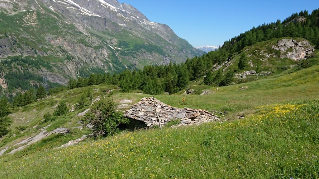 L'Alpage de la Davie depuis Le Chevril 02010