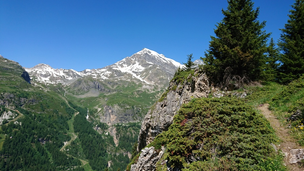 L'Alpage de la Davie depuis Le Chevril 02510