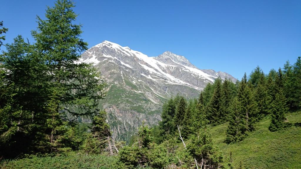 L'Alpage de la Davie depuis Le Chevril 03310