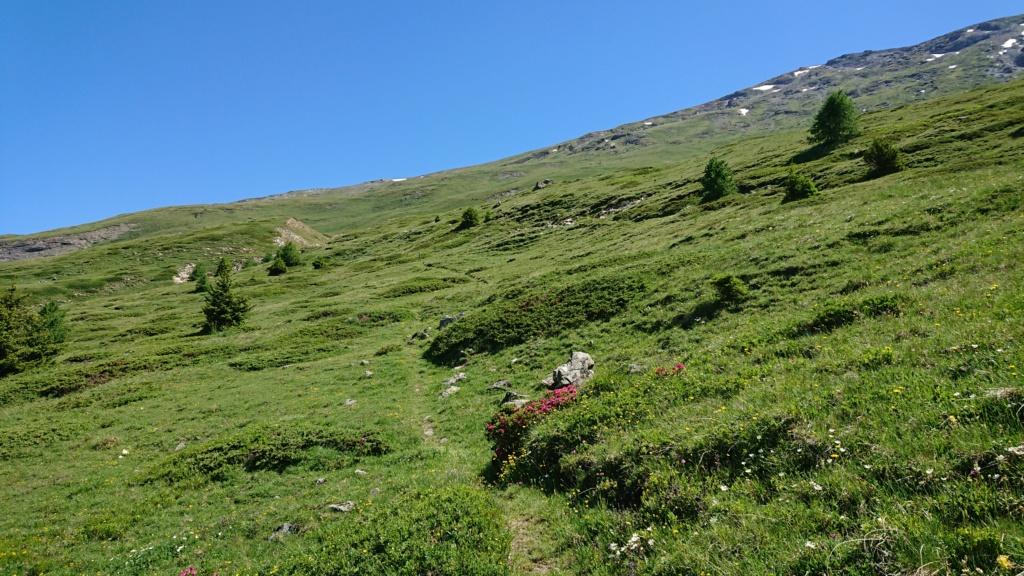L'Alpage de la Davie depuis Le Chevril 03710