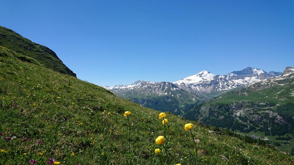 L'Alpage de la Davie depuis Le Chevril 04710