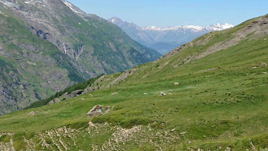 L'Alpage de la Davie depuis Le Chevril 04810