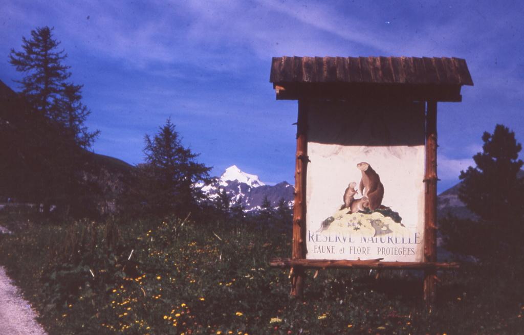 [Val d'Isère] Photos d'archive de la station et des environs - Page 4 1972_010