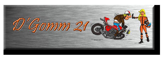 D'Gomm21, Le Forum Logo210