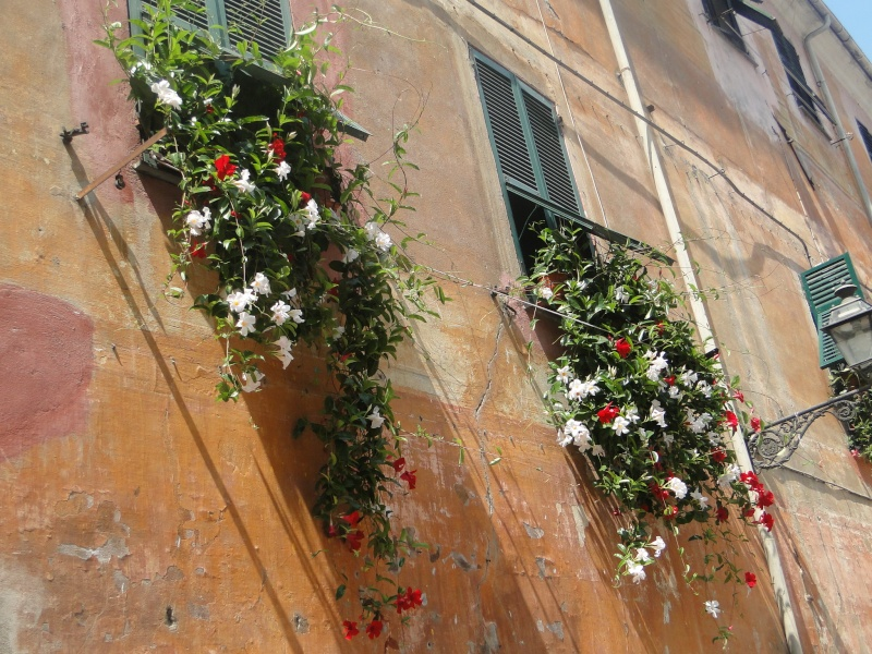 ALBENGA (ITALIE) - Page 2 Albeng46