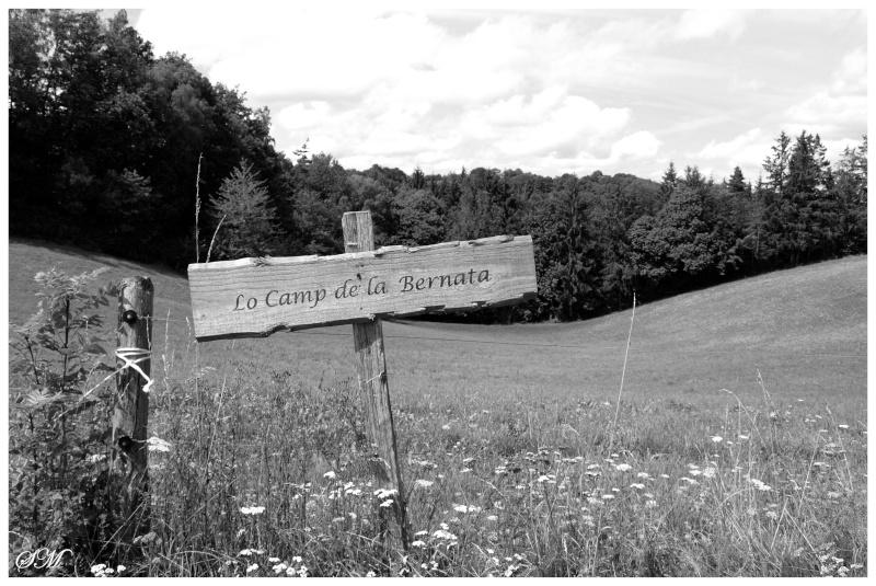 Au coeur de la campagne Teissiéroise Lo_cam10