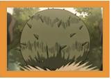 Clan Akimichi Harise11