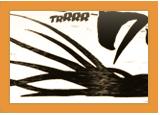 Clan Nara ~ Techniques Kagenu10