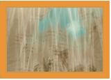 Taijutsu avec armes Souryu11