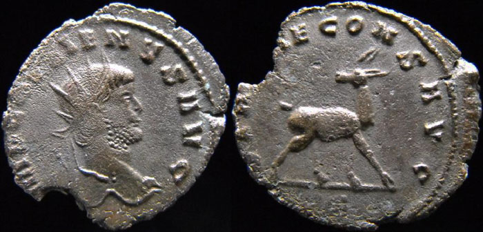Valérien Ier, Gallien et leur famille (PYL) Biche10