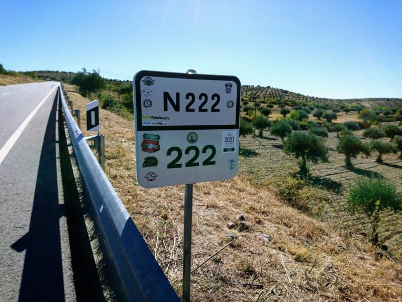 N222 - A melhor estrada do mundo! 49555810
