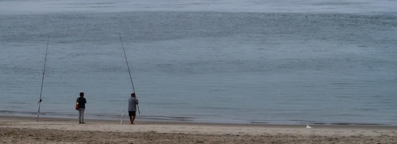 Passeio pela costa - de Mira a Gaia. Img_0123